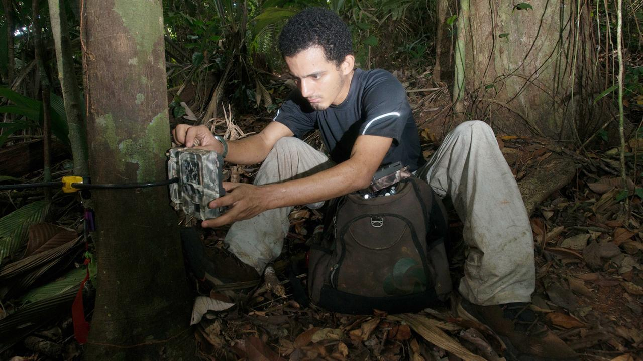 Claudio working in the field in Pananma.